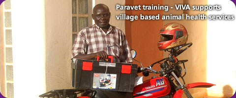 Paravet training - VIVA supports village based animal health services