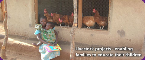 Livestock projects - enabling families to educate their children